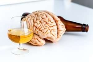 brain and alcohol
