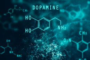 How Serotonin And Dopamine Influence Your Sexual Motivation